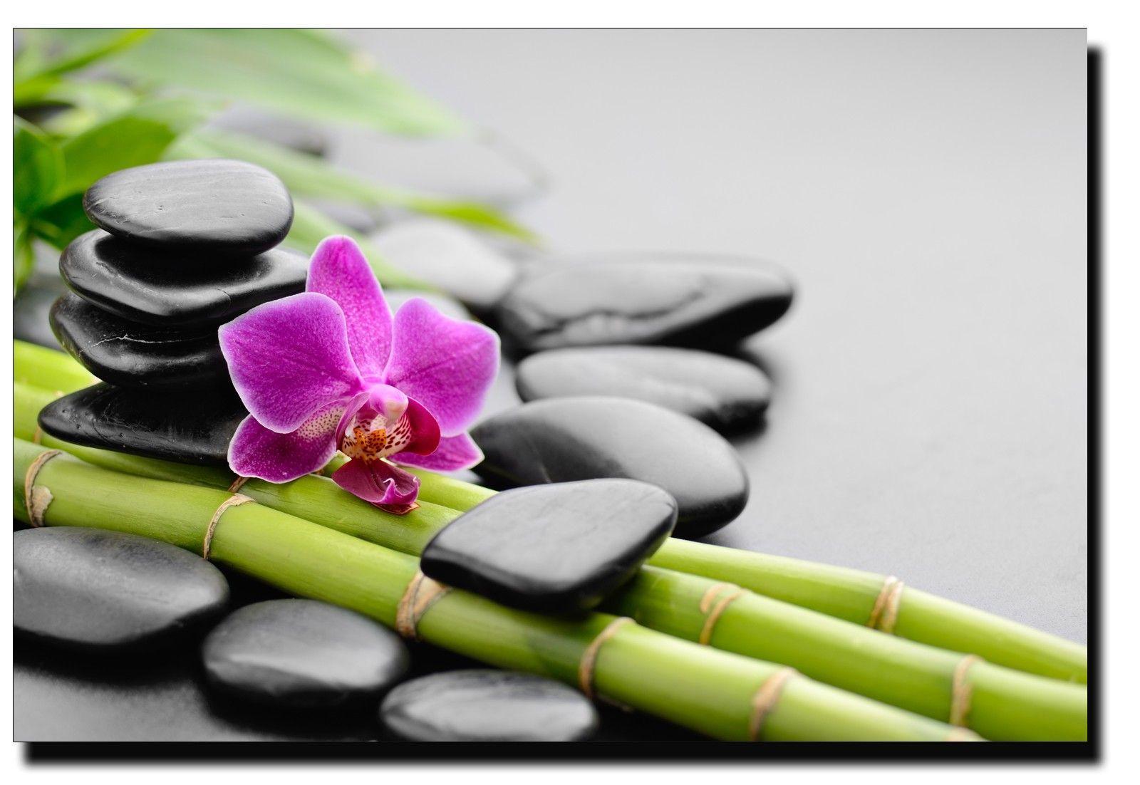 Nature zen attitude - Image zen a imprimer ...